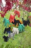 工作的手套在庭院里 图库摄影