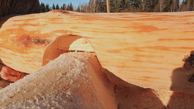 工作的木匠连接日志 加拿大角度石工 加拿大样式 木房子由日志做成 股票视频