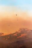 工作的消防队员投入森林火灾 免版税库存图片