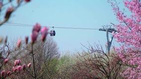 工作缆索铁路在公园 股票录像