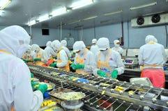 工作者努力研究一条生产线在海鲜工厂在胡志明市,越南 库存照片