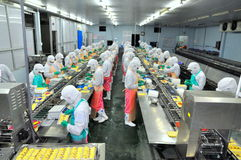 工作者努力研究一条生产线在海鲜工厂在胡志明市,越南 免版税库存照片