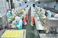 工作者努力研究一条生产线在海鲜工厂在胡志明市,越南 库存图片