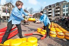 乳酪市场在阿尔克马尔 免版税库存照片
