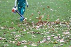 工作者在公园在秋天收集叶子 免版税库存图片