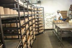 工作者在面包、蛋糕和意大利节日糕点产业的生产线工作在圣保罗 库存图片