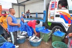 工作者工作在海鲜市场上在海口 库存图片