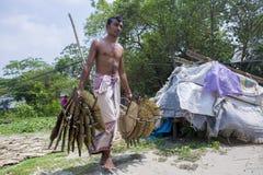 工作者是繁忙的在太阳轻的死的手扶的爱好者叶子棕榈叶下 免版税库存图片