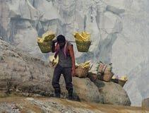 工作者运载在火山口里面的硫磺在伊真火山火山,印度尼西亚 免版税库存照片