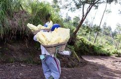 工作者运载在火山口里面的硫磺 免版税库存图片