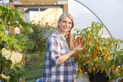 工作自温室的妇女 免版税图库摄影