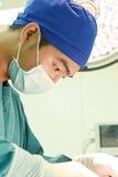 工作运转中室的一位兽医医生 免版税库存照片