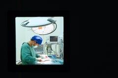 工作运转中室的一位兽医医生 图库摄影
