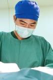 工作运转中室的一位兽医医生 库存照片