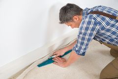 工匠贴合地毯 图库摄影
