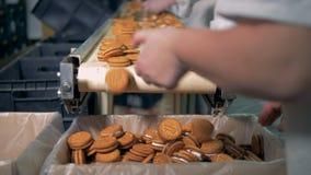 工厂的雇员排序准备好饼干并且放弃有毛病部分 股票视频
