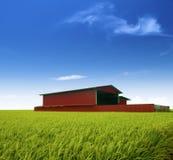 工厂米 免版税库存照片