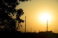 工厂设备在日落和白杨树背景中分支 在拒绝有效海洋日落黄色之上 免版税库存图片