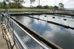工厂雨处理水 免版税库存图片