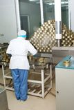 工厂食物装罐了 库存图片