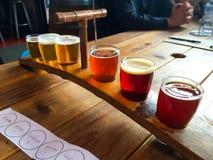 工艺啤酒取样器 免版税库存照片
