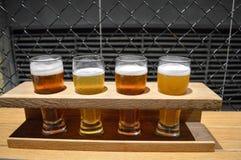 工艺啤酒品尝  库存照片