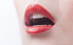 左边妇女嘴唇 免版税库存照片