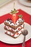 巧克力与打好的奶油的草莓蛋糕 免版税图库摄影