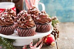 巧克力与棒棒糖的薄荷杯形蛋糕 免版税图库摄影