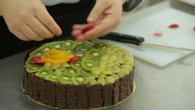 巧克力与猕猴桃、葡萄和果冻调味料的奶油蛋糕,用草莓盖 股票视频