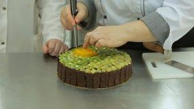 巧克力与猕猴桃和葡萄调味料的奶油蛋糕,用果冻盖 股票视频