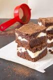 巧克力乳酪蛋糕果仁巧克力片断  库存图片