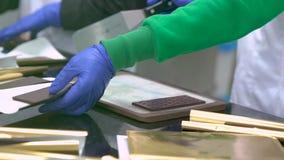 巧克力做工厂 雇员包装的巧克力块 股票视频