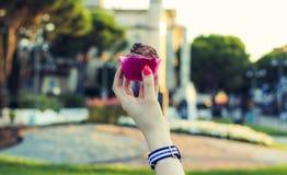 巧克力冰淇凌圣代冰淇淋  库存图片
