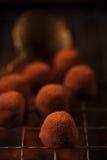 巧克力可可粉拂去灰尘的粉末块菌 库存照片