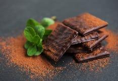 巧克力和薄菏 免版税库存照片