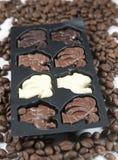 巧克力咖啡种子 免版税库存图片