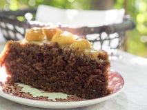 巧克力在桃红色板材的马卡达姆坚果蛋糕片断  免版税库存图片