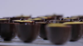 巧克力在白色背景的甜点汇集 巧克力果仁糖关闭 影视素材