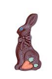 巧克力复活节兔子 库存照片