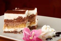 巧克力奶油蛋糕 库存图片