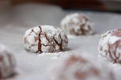 巧克力姜饼曲奇饼 库存照片