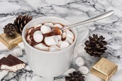巧克力布丁用蛋白软糖和糖果蛋白牛奶酥 库存照片