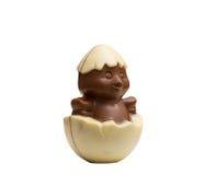 巧克力形象-鸡被孵化在壳外面 免版税库存照片