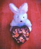 巧克力心脏形状 库存照片