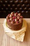 巧克力提拉米苏蛋糕的顶视图用莓,黑醋栗,洒与在木的褐色的可可粉 免版税库存图片
