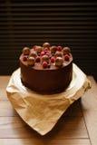 巧克力提拉米苏蛋糕的顶视图用莓,黑醋栗,洒与在木的褐色的可可粉 免版税库存照片