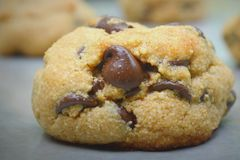 巧克力曲奇饼面筋释放 库存图片