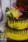 巧克力有排列的蛋糕用异乎寻常的果子 库存照片