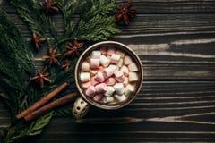 巧克力有颜色的可可粉杯子时髦的土气冬天舱内甲板位置  免版税库存照片